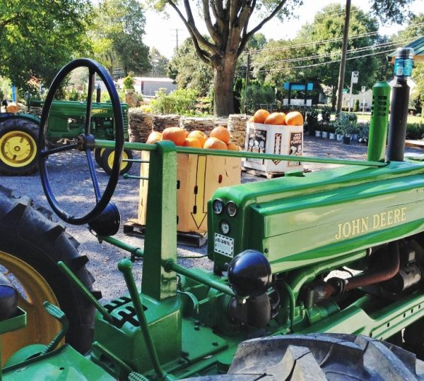 spring water farms tractors pumpkin